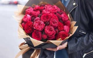 Как спросить у девушки какие ей нравятся цветы
